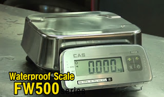 New CAS FW500 Waterproof Scale IP69 from Sensortronic Scales