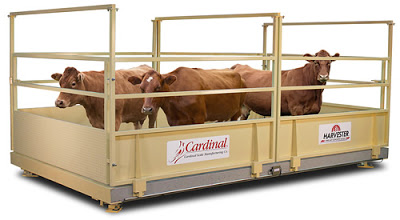 Cardinal's New Harvester® Livestock Scales