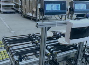Giropes' Weight Sorting System in a Packaging Line