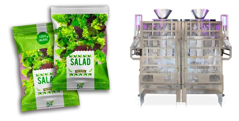 Highest efficiency in Packaging Machine applied to fresh vegetables sector