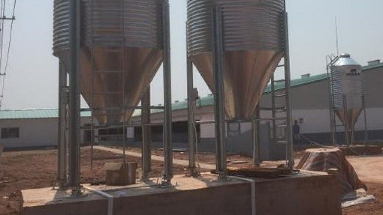 Wen's Food - Scaime Silo Weighing for pig farming