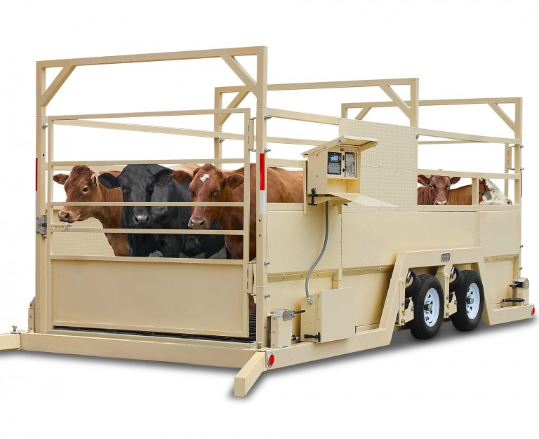 Cardinal Scale's New Weight Wrangler Mobile and Portable Group Livestock Scales